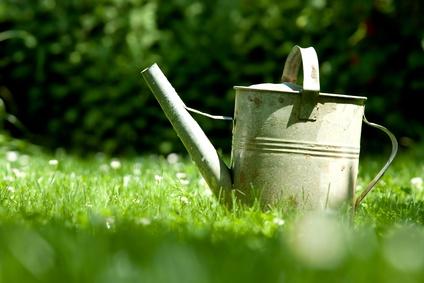 arrosoir jardin