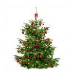 Comment adopter une attitude responsable à Noël ?
