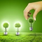 Green Lamp: une lampe originale et écologique