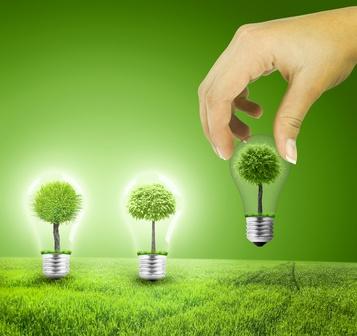 ampoule verte plantée dans un champ