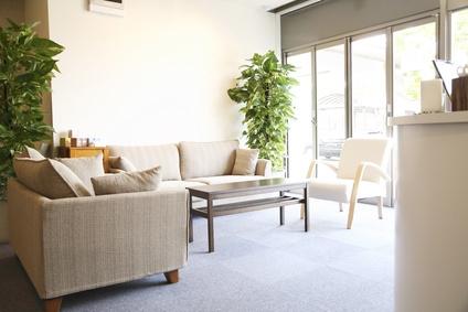 salon-plantes-depolluantes