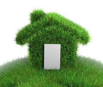 maison verte herbe