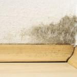 Humidité des murs: comment agir?