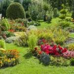 Jardin exposé au vent: quelles sont les précautions à prendre?