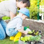 Comment aménager un jardin pour les enfants?
