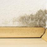 Peinture anti-humidité:quelles sont ses caractéristiques et comment l'utiliser?
