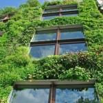 Quels sont les avantages de la végétalisation?