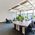Quelles sont les plantes à privilégier au bureau?