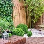 Aménagement extérieur : quelles plantes choisir pour un petit jardin ?