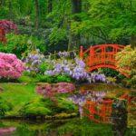 Comment créer un jardin japonais?