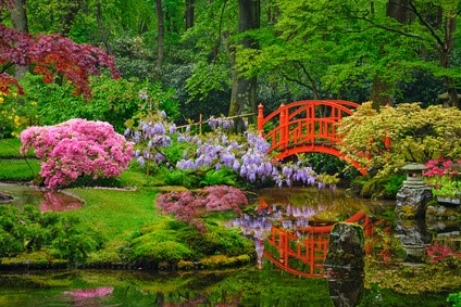 Jardin japonais avec bassin d'eau