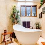 Quelles plantes choisir pour votre salle de bains ?