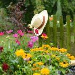 5 conseils pour un jardin écologique