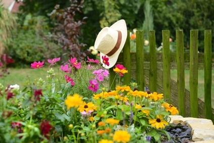 Jardin écologique.