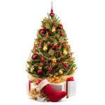Décoration du sapin de Noël:3astuces pour un résultat harmonieux