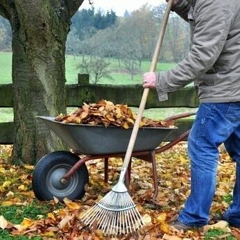 Ramassage de feuilles mortes en hiver.
