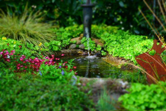 Source d'eau dans un jardin.