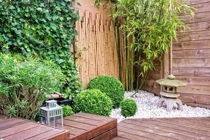 Petit jardin dont les murs sont recouverts de végétaux.