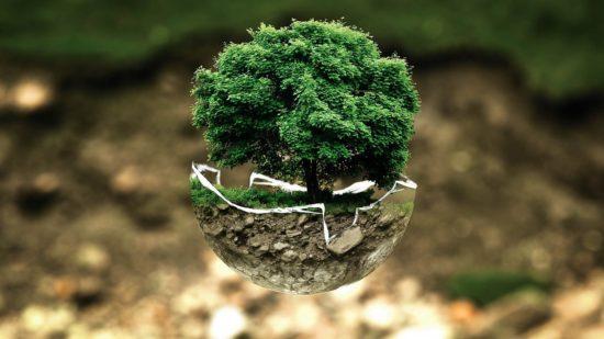 Ecologie et préservation de l'environnement.