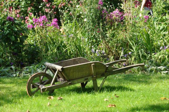Jardin avec brouette.