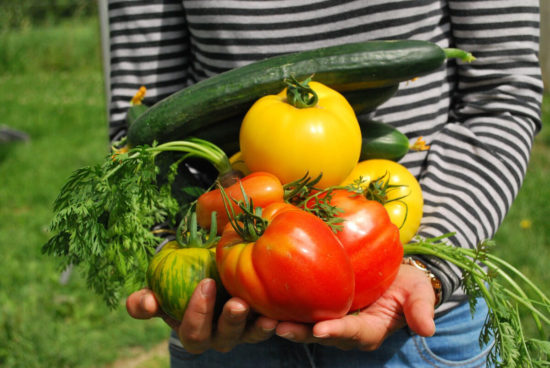 personne avec des legumes dans les bras