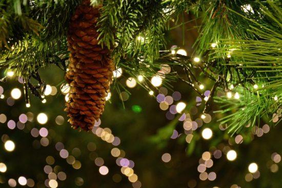 Guirlande lumineuse et pomme de pin sur un sapin de Noël