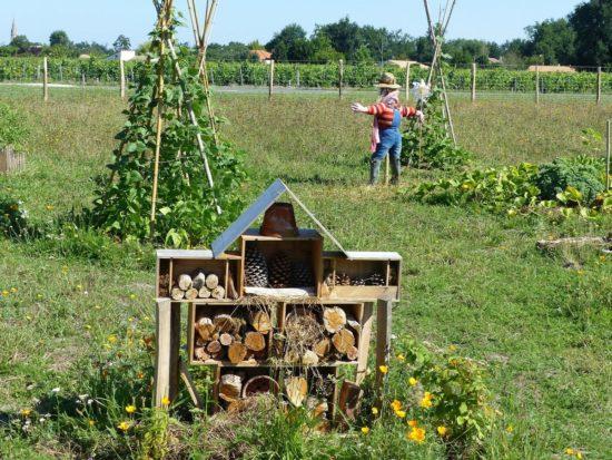 jardin en permaculture avec un hotel a insectes