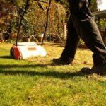 Comment bien entretenir votre pelouse?